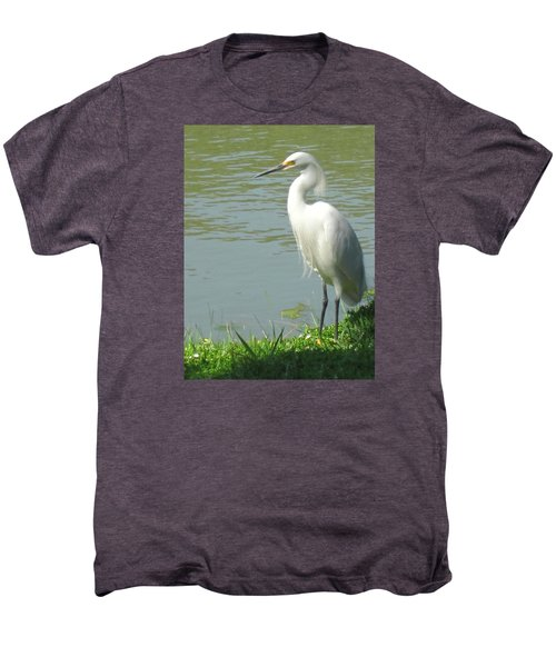 Bird Men's Premium T-Shirt by Sandy Taylor