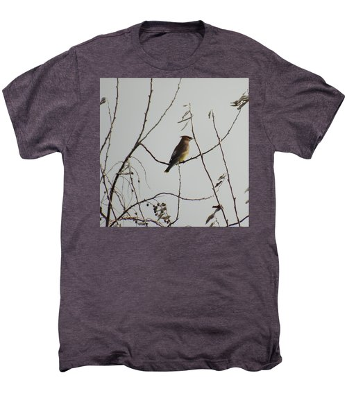 Cedar Wax Wing In Tree Men's Premium T-Shirt by Kenneth Willis