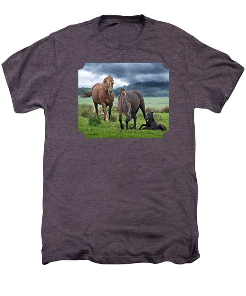 Dartmoor Ponies Men's Premium T-Shirt by Gill Billington