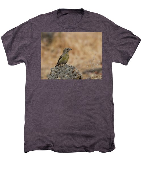 Female Red Crossbill Men's Premium T-Shirt by Doug Lloyd