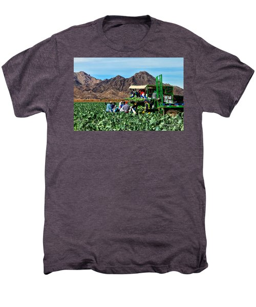 Harvesting Broccoli Men's Premium T-Shirt by Robert Bales