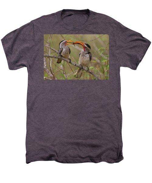 Hornbill Love Men's Premium T-Shirt by Bruce J Robinson