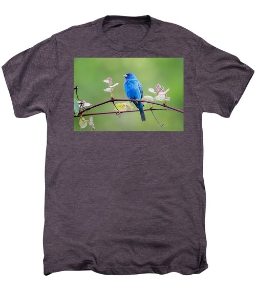 Indigo Bunting Perched Men's Premium T-Shirt by Bill Wakeley