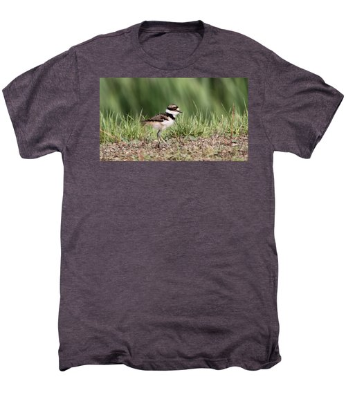 Killdeer - 24 Hours Old Men's Premium T-Shirt by Travis Truelove