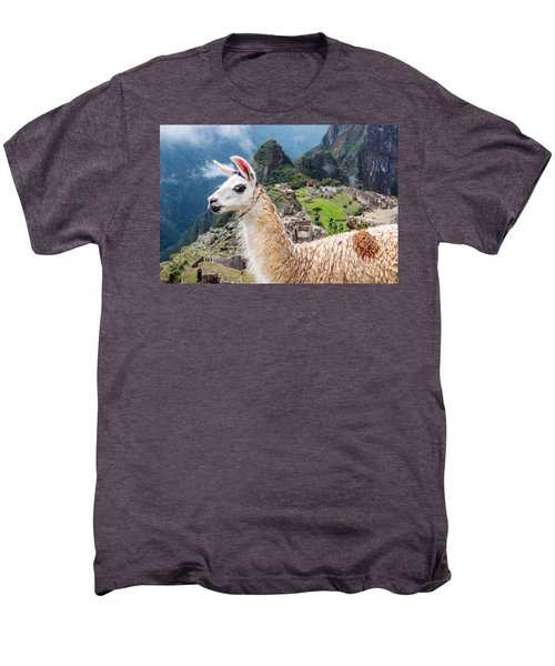 Llama At Machu Picchu Men's Premium T-Shirt by Jess Kraft