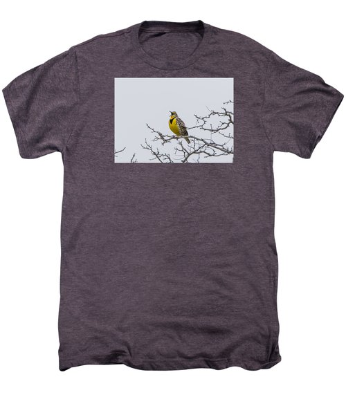 Meadowlark In Tree Men's Premium T-Shirt by Marc Crumpler