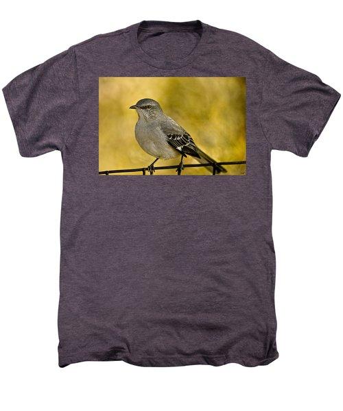 Northern Mockingbird Men's Premium T-Shirt by Chris Lord