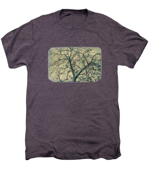 Red Apples In Empty Garden Men's Premium T-Shirt by Konstantin Sevostyanov