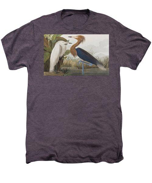 Reddish Egret Men's Premium T-Shirt by John James Audubon
