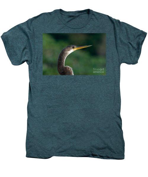 Anhinga Men's Premium T-Shirt by Mark Newman
