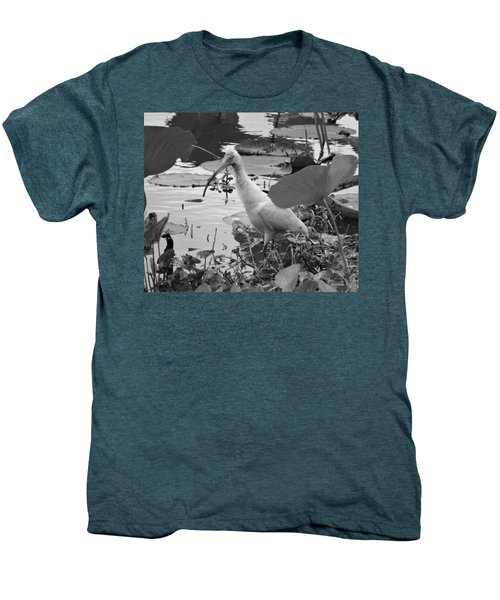 American White Ibis Black And White Men's Premium T-Shirt by Dan Sproul