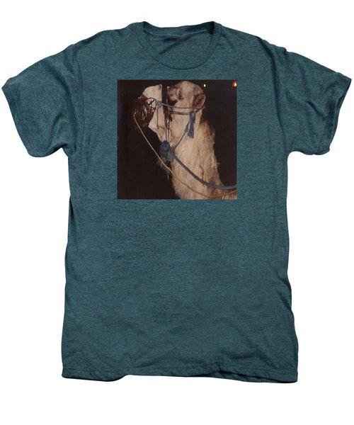Camel  Men's Premium T-Shirt by Ryan Fox