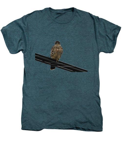 Magical Merlin Men's Premium T-Shirt by Debbie Oppermann