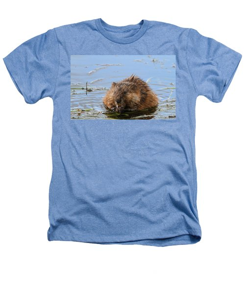 Beaver Portrait Heathers T-Shirt by Dan Sproul