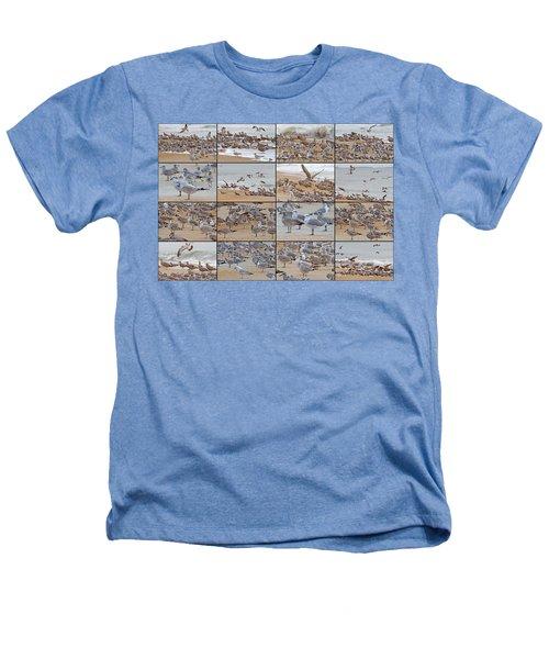Birds Of Many Feathers Heathers T-Shirt by Betsy Knapp