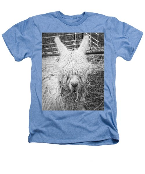 Black And White Alpaca Photograph Heathers T-Shirt by Keith Webber Jr