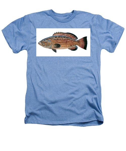 Black Grouper Heathers T-Shirt by Carey Chen