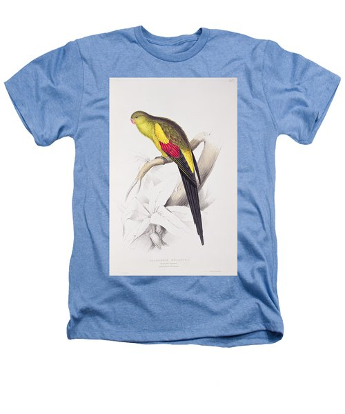 Black Tailed Parakeet Heathers T-Shirt by Edward Lear