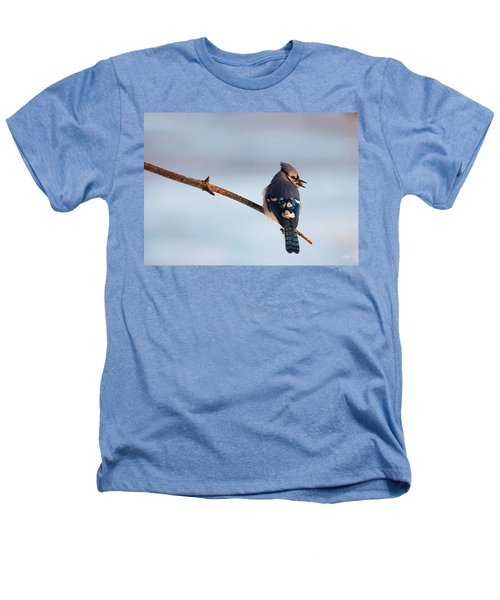 Blue Jay With Nuts Heathers T-Shirt by Everet Regal