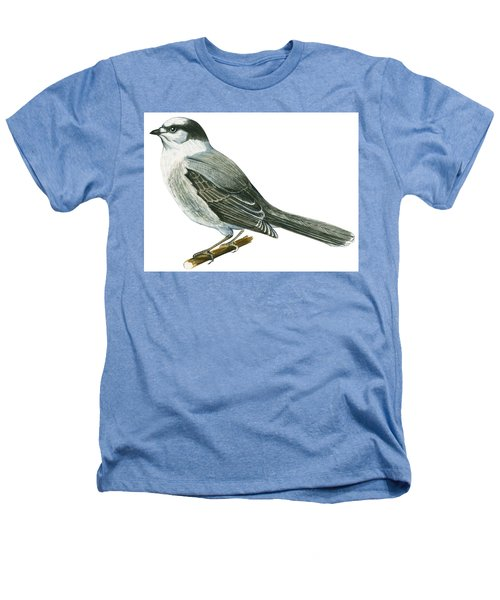 Canada Jay Heathers T-Shirt by Anonymous