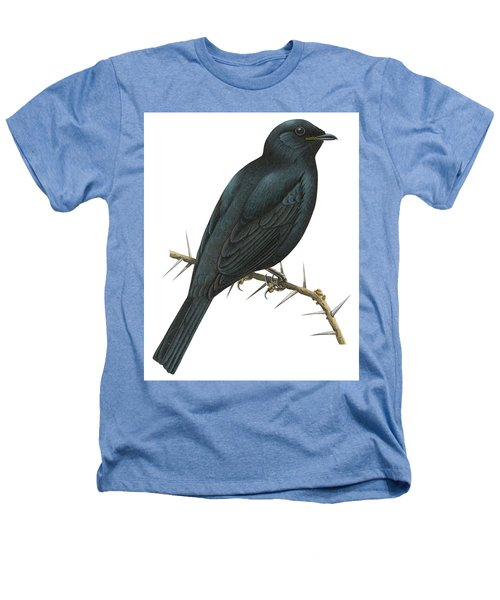 Cuckoo Shrike Heathers T-Shirt by Anonymous