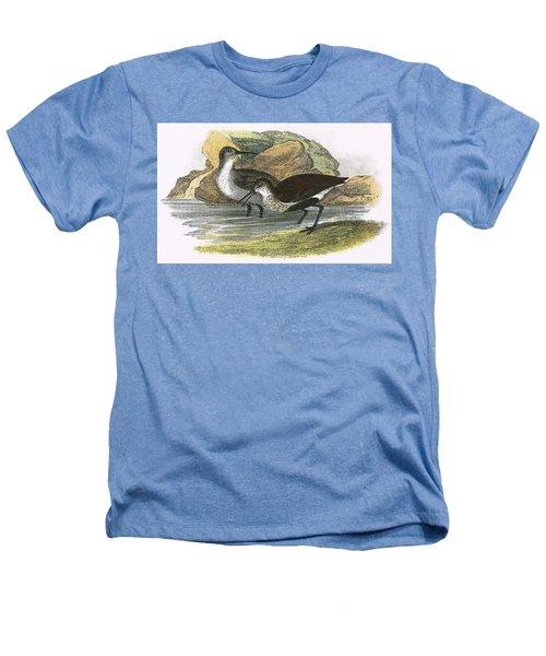 Dunlin Heathers T-Shirt by English School