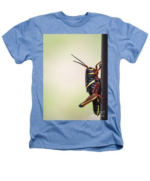 Giant Eastern Lubber Grasshopper Heathers T-Shirt by Edward Fielding