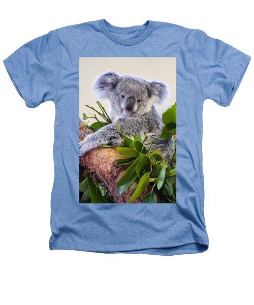 Koala On Top Of A Tree Heathers T-Shirt by Chris Flees