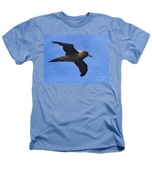 Pelagic Seabird... Heathers T-Shirt by Nina Stavlund