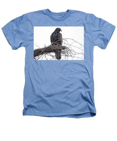 Turkey Vulture Heathers T-Shirt by Douglas Barnard