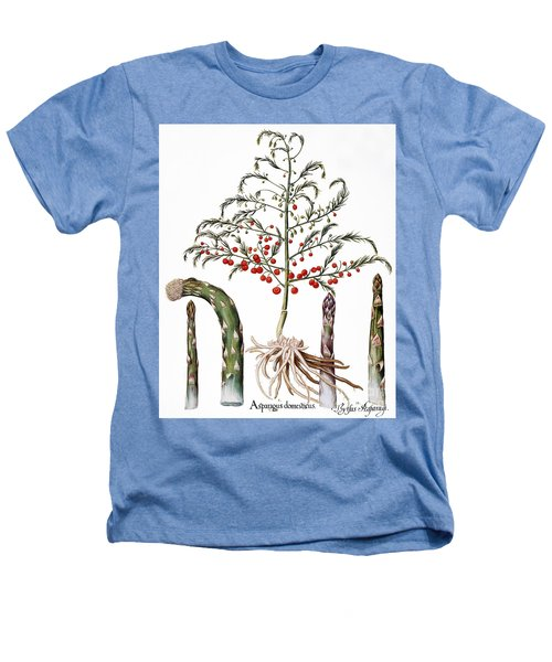 Botany: Asparagus, 1613 Heathers T-Shirt by Granger