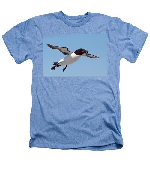 Razorbill In Flight Heathers T-Shirt by Bruce J Robinson