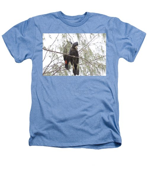 Red Tailed Black Cockatoos Heathers T-Shirt by Douglas Barnard