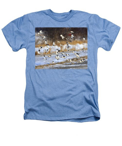 Snow Buntings Heathers T-Shirt by Tony Beck
