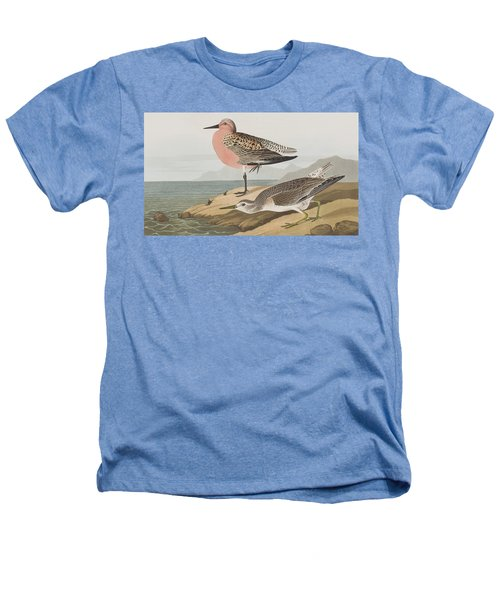 Red-breasted Sandpiper  Heathers T-Shirt by John James Audubon