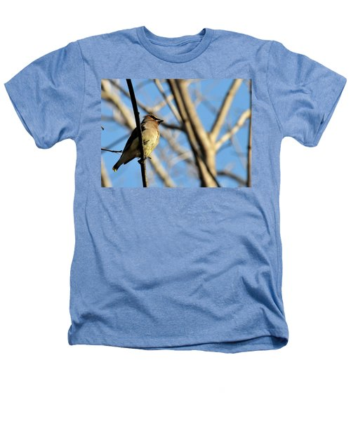 Cedar Wax Wing Heathers T-Shirt by David Arment