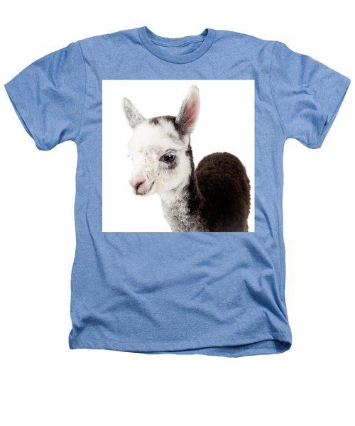 Adorable Baby Alpaca Cuteness Heathers T-Shirt by TC Morgan