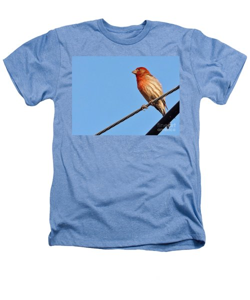 American Crossbill On Wire     Spring   Indiana   Heathers T-Shirt by Rory Cubel