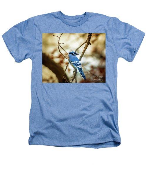 Blue Jay Heathers T-Shirt by Robert Frederick