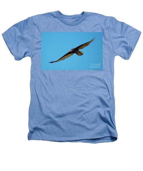 Buzzard Circling Heathers T-Shirt by Mike Dawson