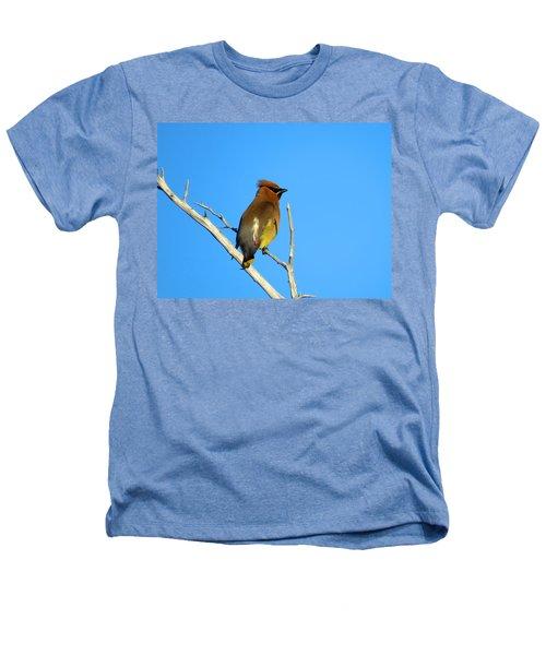 Cedar Waxwing Heathers T-Shirt by Dianne Cowen