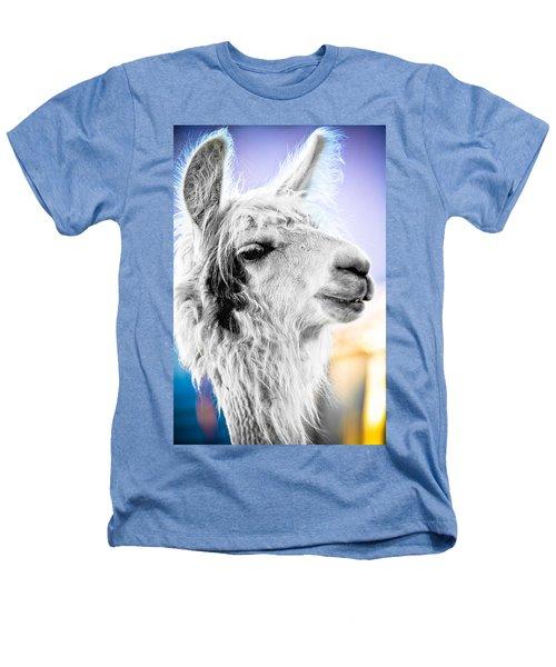 Dirtbag Llama Heathers T-Shirt by TC Morgan