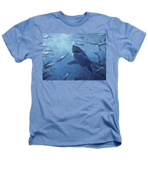 Great White Shark Carcharodon Heathers T-Shirt by Mike Parry
