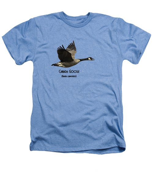 Isolated Canada Goose 2015-1 Heathers T-Shirt by Thomas Young