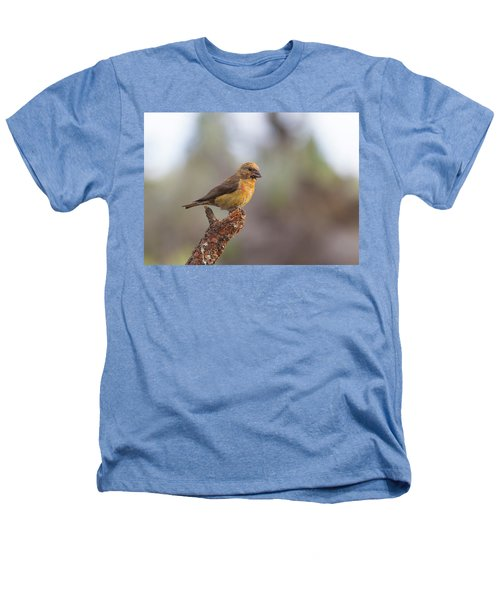Juvenile Male Red Crossbill Heathers T-Shirt by Doug Lloyd