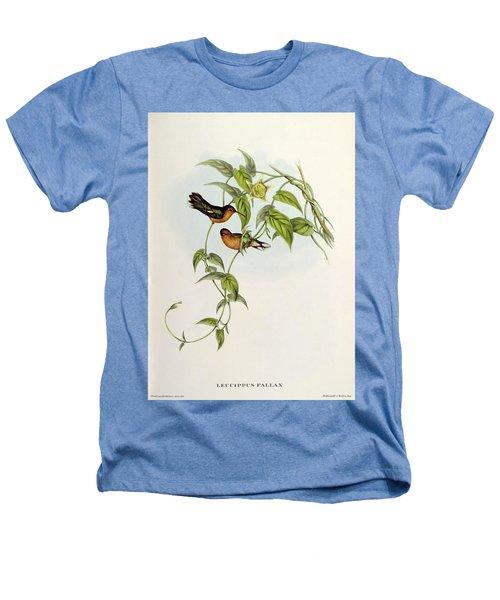 Leucippus Fallax Heathers T-Shirt by John Gould