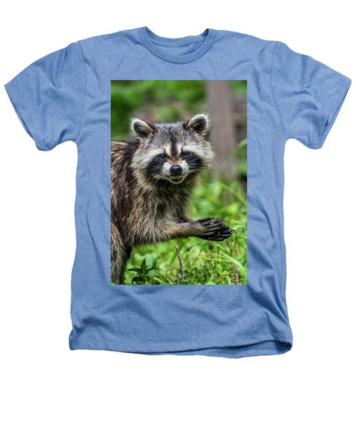 Smiling Raccoon Heathers T-Shirt by Paul Freidlund