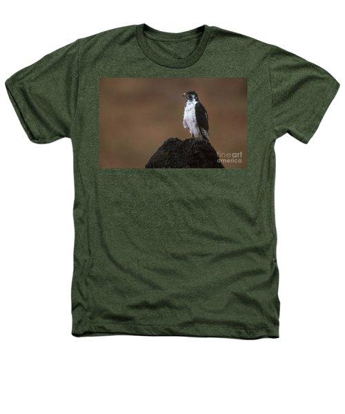 Augur Buzzard Heathers T-Shirt by Art Wolfe