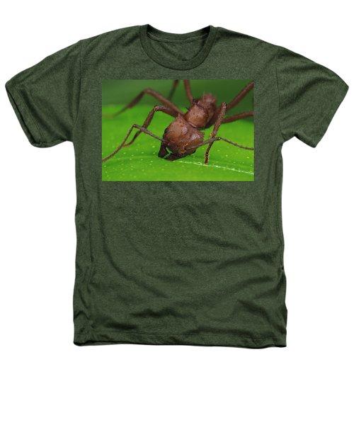 Leafcutter Ant Cutting Papaya Leaf Heathers T-Shirt by Mark Moffett