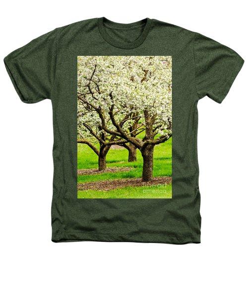 Apple Blossoms Heathers T-Shirt by Joe Mamer